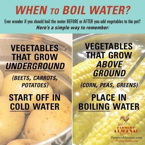 boiling veggies.jpg